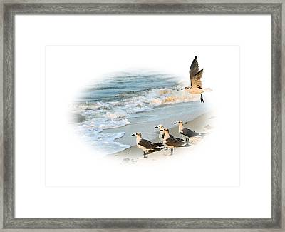 Coming In For A Landing Framed Print by Kristin Elmquist