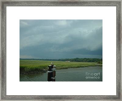Coming On  Framed Print