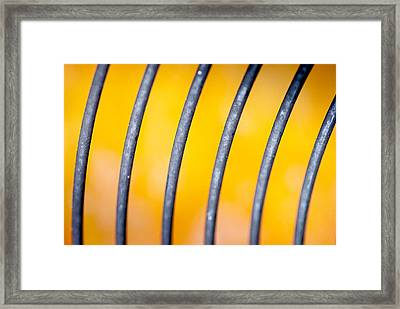 Common Misconception Framed Print by Gene Hilton