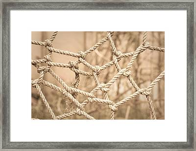 Complicated Framed Print by Tom Gowanlock
