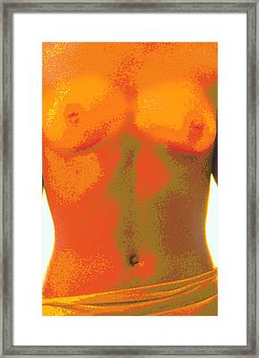 Computer Abstract Of Woman's Torso, Front View Framed Print