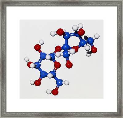 Computer Graphic Of A Molecule Of Sucrose Framed Print