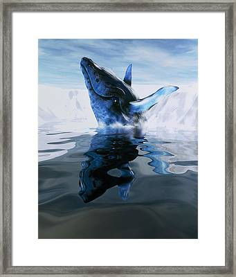 Computer Illustration Of A Humpback Whale Framed Print by Victor Habbick Visions