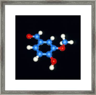 Computer Model Of A Molecule Of Vanillin Framed Print by Laguna Design