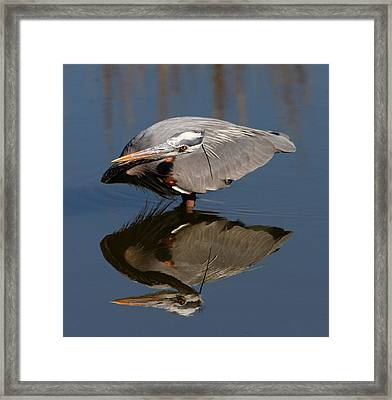 Concentration Framed Print by Phil Lanoue