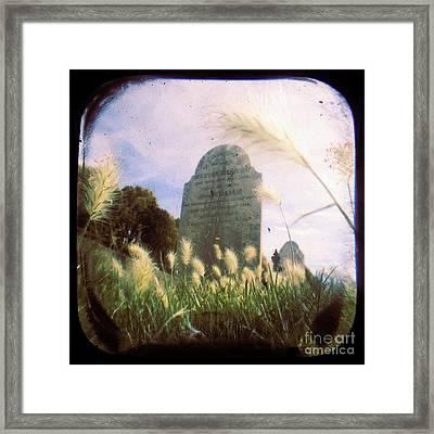 Concilation Framed Print by Andrew Paranavitana