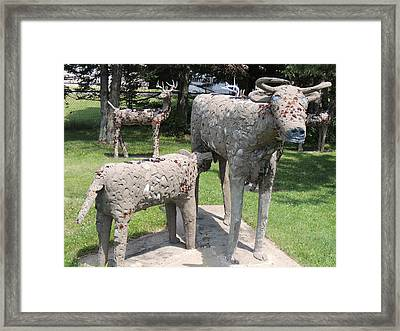 Concrete Calf And Cow Framed Print by Peg Toliver