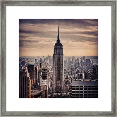 Concrete Jungle - New York Framed Print