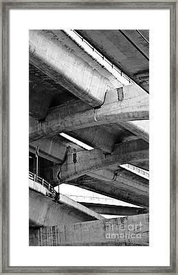 Concrete Jungle Canopy Framed Print by L E Jimenez