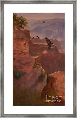 Condor Blessing Framed Print by Ruth Ann Sturgill