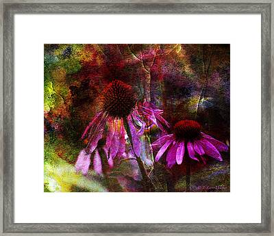 Cone Flower Beauties Framed Print