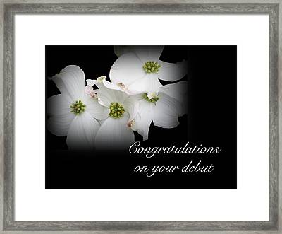 Congratulations On Your Debut - White Dogwood Blossoms Framed Print