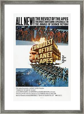 Conquest Of The Planet Of The Apes Framed Print