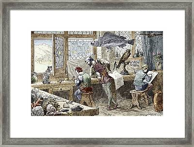 Conrad Gessner's Nature Collection Framed Print by Sheila Terry