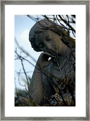 consider I Framed Print by Phil Bongiorno