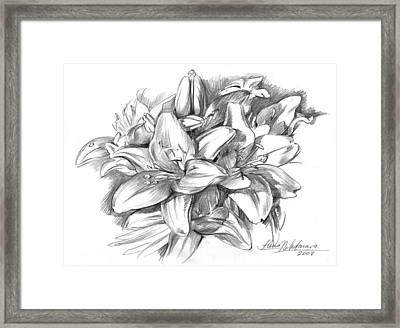 Conte Pencil Sketch Of Lilies Framed Print