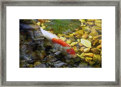 Framed Print featuring the photograph Contemplation by Dan Menta