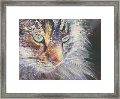 Contemplation Framed Print by Sue Linton