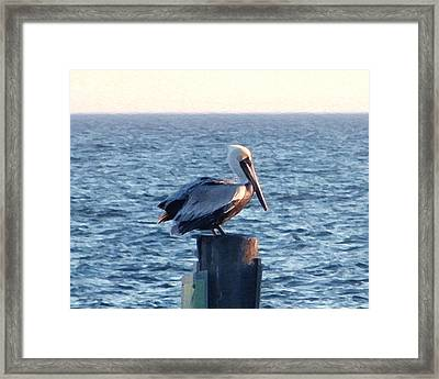 Framed Print featuring the photograph Content by Brian Wright
