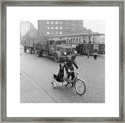 Contented Police Dog Framed Print by Hans Meyer