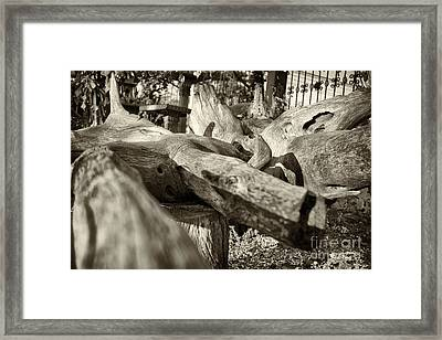 Contorsion Framed Print