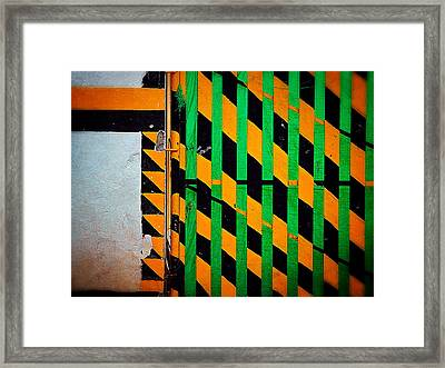 Contradiction Framed Print by Skip Hunt