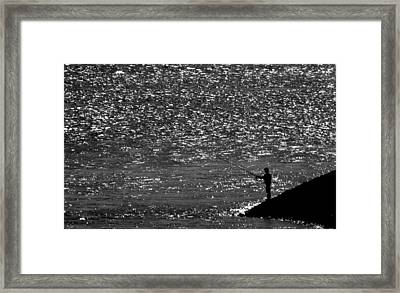 Contrast Framed Print by Janos Vajda Photograph Art