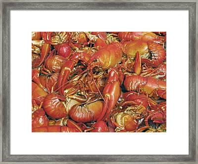 Cooked Crayfish Framed Print