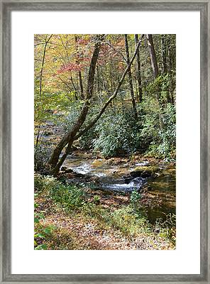 Cool Creek Framed Print by Margaret Palmer