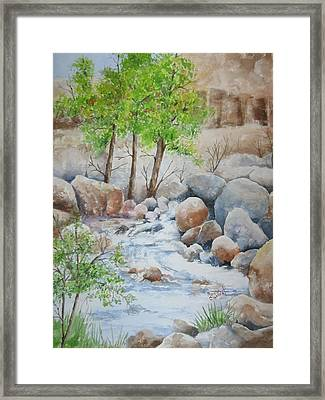 Cooling Stream II Framed Print