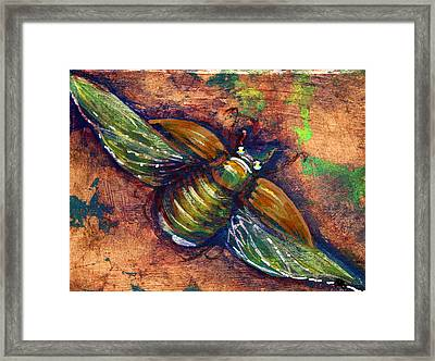 Copper Beetle Framed Print