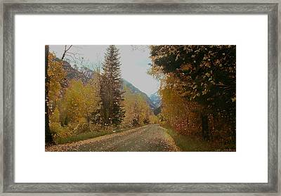 Copper Lane Framed Print