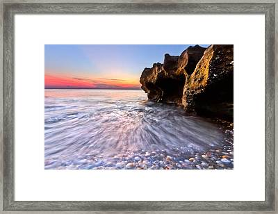 Coquillage Framed Print