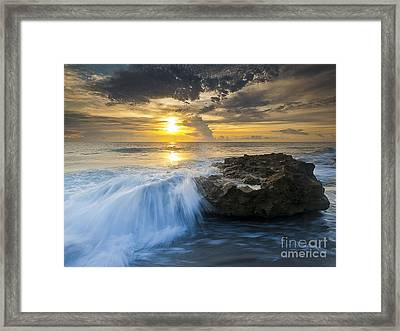 Coral Cove Framed Print by Bruce Bain