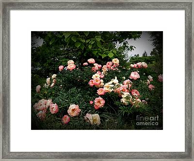 Framed Print featuring the photograph Coral Peony by Tanya  Searcy
