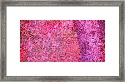 Coral Reef Framed Print by Cindy Lee Longhini