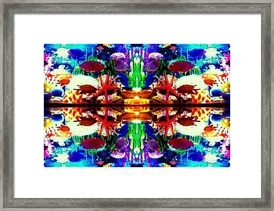 Coral Reefs 4 Framed Print