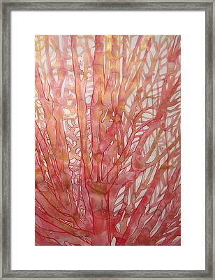 Coral Veins Framed Print
