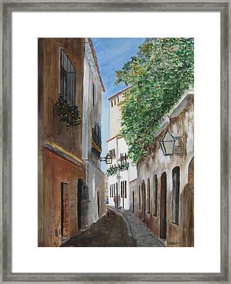 Cordova Lane Framed Print by Heidi Patricio-Nadon