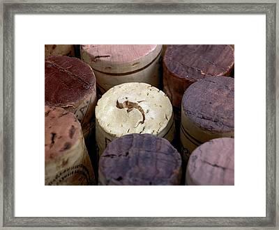 Corks Framed Print by Maria Toutoudaki