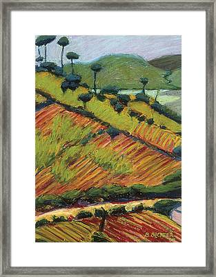 Corn And Beans Framed Print