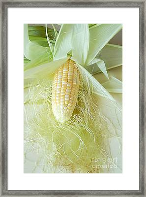 Corn On The Cob Framed Print