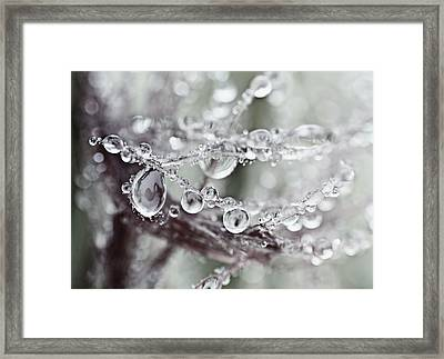 Corned Jewels Framed Print