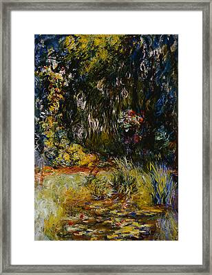 Corner Of A Pond With Waterlilies Framed Print by Claude Monet