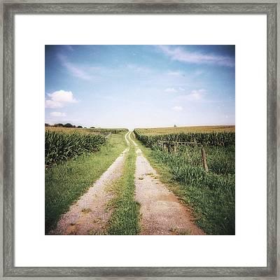 Cornfield After Harvest Framed Print