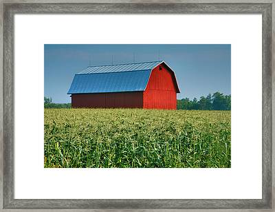 Cornfield And Red Barn Framed Print
