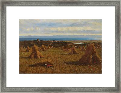Cornstooks Framed Print by JM Barber