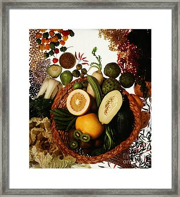 Cornucopia Of Exotic Fruit Framed Print by Photo Researchers