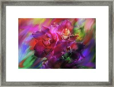 Coronation Orchids  Framed Print