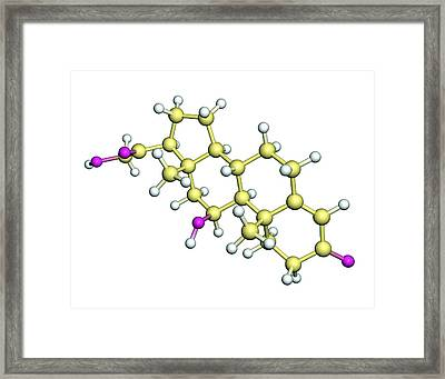 Corticosterone Hormone Molecule Framed Print by Dr Tim Evans